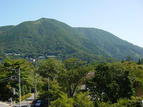 Gora View
